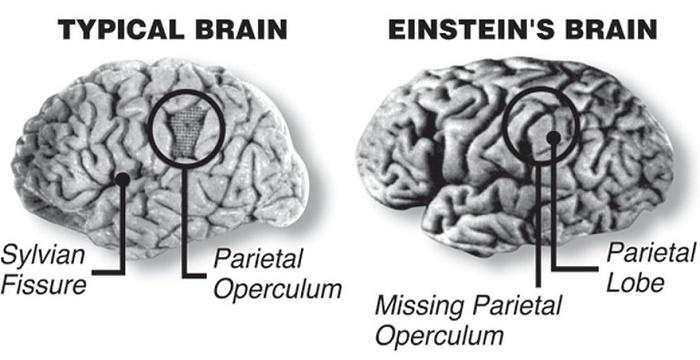 Otak Pembuat Bom Nuklir Berakhir Dengan Potongan-Potongan