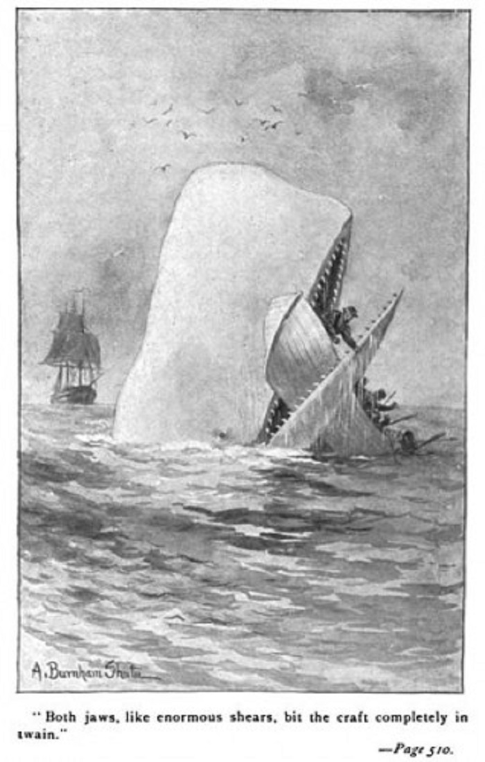 Photo Credit: http://www.travelthruhistory.tv/the-essex-whale-moby-dick/